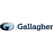 Gallagher Insurance, Risk Management & Consulting - 13.01.20
