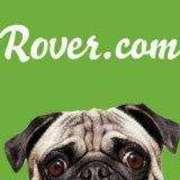 Rover.com | Houston Dog Boarding Photo