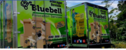 BlueBell Moving and Storage - 14.11.17