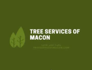 Tree Services of Macon - 28.07.20
