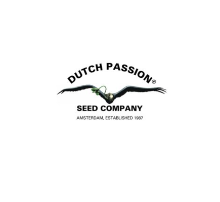 Dutch Passion - 25.09.18