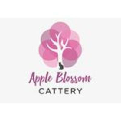 Apple Blossom Cattery - 12.03.19