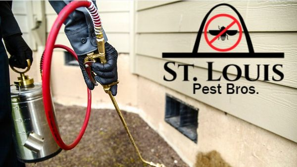 St. Louis Pest Bros. - 11.01.20