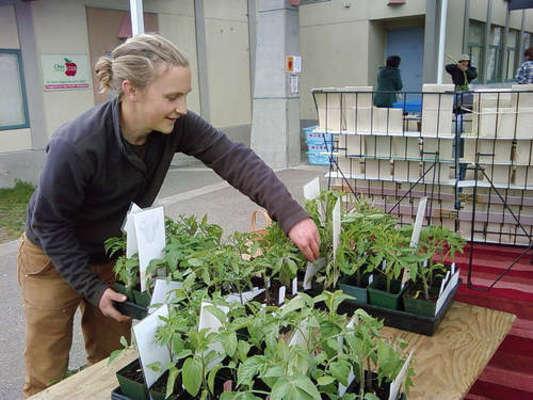 Moss St Community Market - 12.08.10
