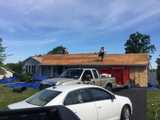 Forte Roofing - 06.02.18